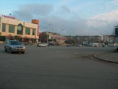 nnarimanov10